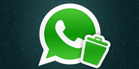 Imagem de WhatsApp: como impedir que arquivos sejam salvos automaticamente no site TecMundo
