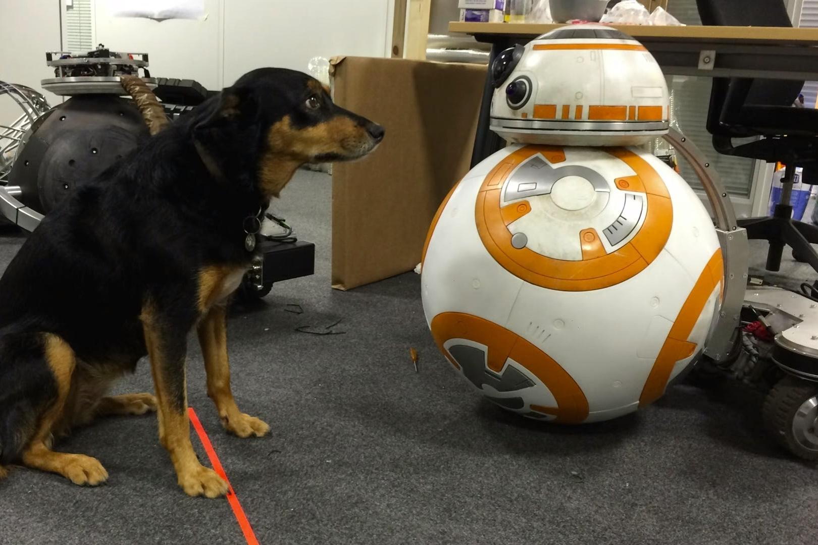 """Imagem de Como funcionava o BB-8 """"de verdade"""" que apareceu no cinema no tecmundo"""