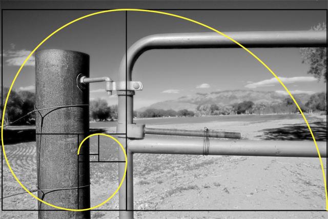 Resultado de imagem para proporção aurea cinema