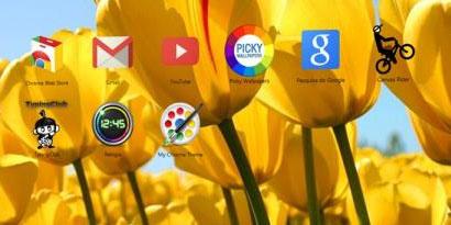 Imagem de Google Chrome: como criar temas para o navegador no site TecMundo