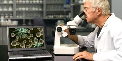 Imagem de As 5 descobertas científicas mais interessantes dos últimos anos no site TecMundo