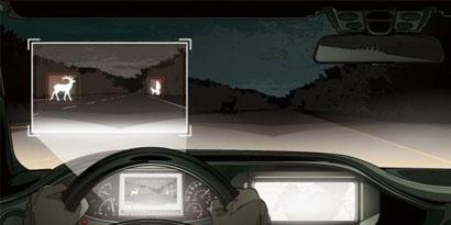 Imagem de Mercedes-Benz: sensores infravermelhos podem detectar animais a 500m no site TecMundo