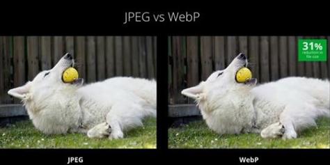 Imagem de Google aposta em WebP e VP9 como novos formatos de imagem e vídeo no site TecMundo