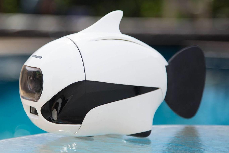 """Imagem de BIKI, o """"drone"""" que não voa e captura imagens embaixo d'agua no tecmundo"""