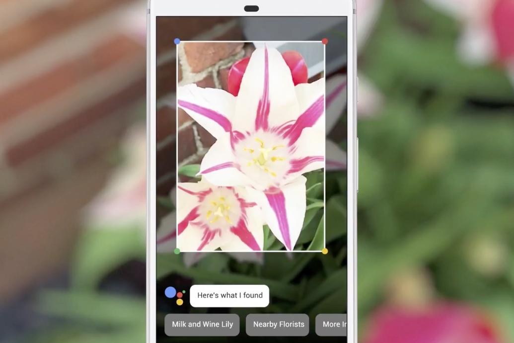 Imagem de Google Lens está chegando ao Google Assistente no Pixel e Pixel 2 no tecmundo
