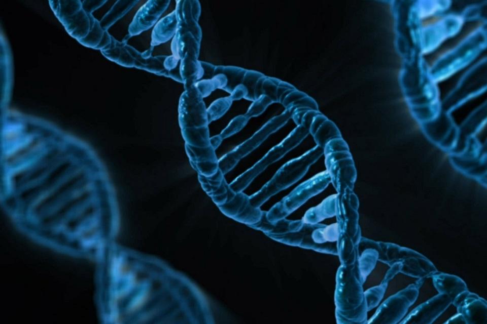 Imagem de Autorizada comida geneticamente editada com CRISPR  no tecmundo