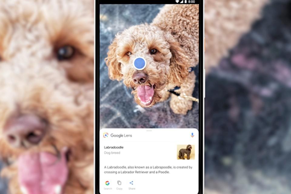 Imagem de Descubra, anote ou encontre o que quiser com a câmera das Google Lens no tecmundo