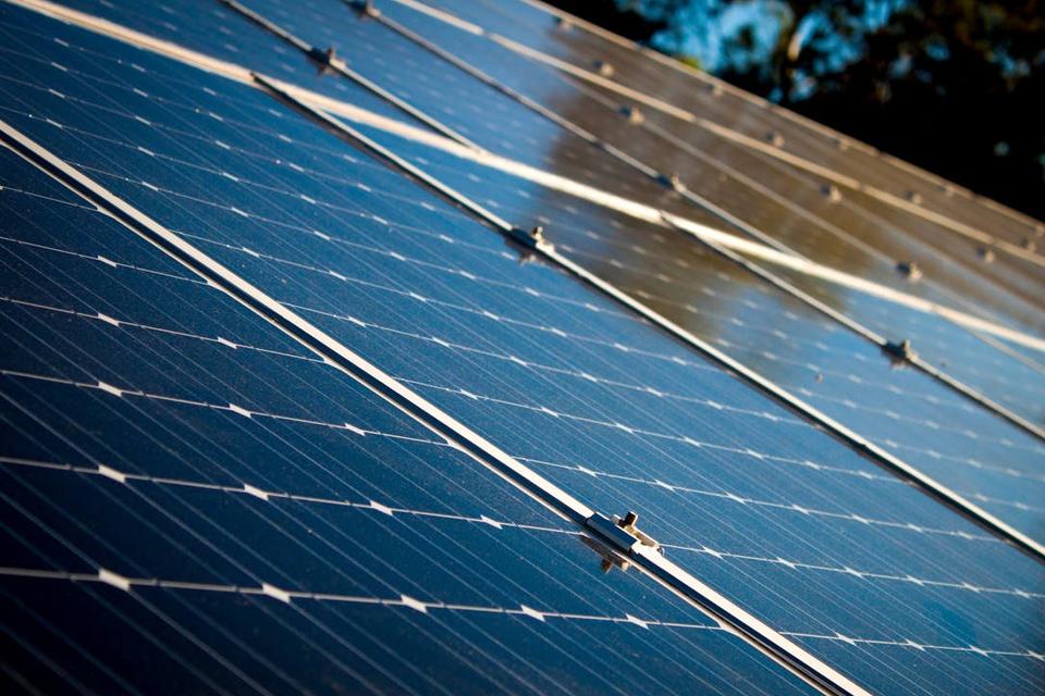 Imagem de Pesquisadores criam painéis de energia solar que funcionam com bactérias no tecmundo