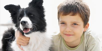 Imagem de Site registra seu animal de estimação em cartório e até oficializa sobrenome no site TecMundo