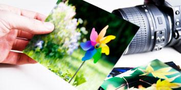 Imagem de Aprenda os passos básicos do PhotoScape para deixar suas fotos incríveis no site TecMundo
